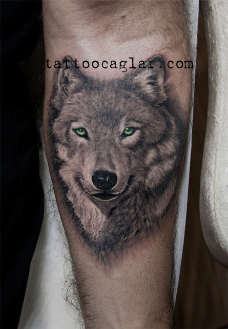 wolf 3d kurt tattoo dövme tattoocaglar